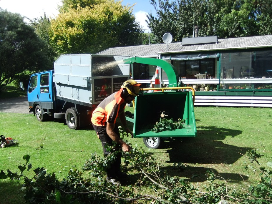 C27 Hansa chipper in action chipping a large Quercus robur (English Oak) tree.